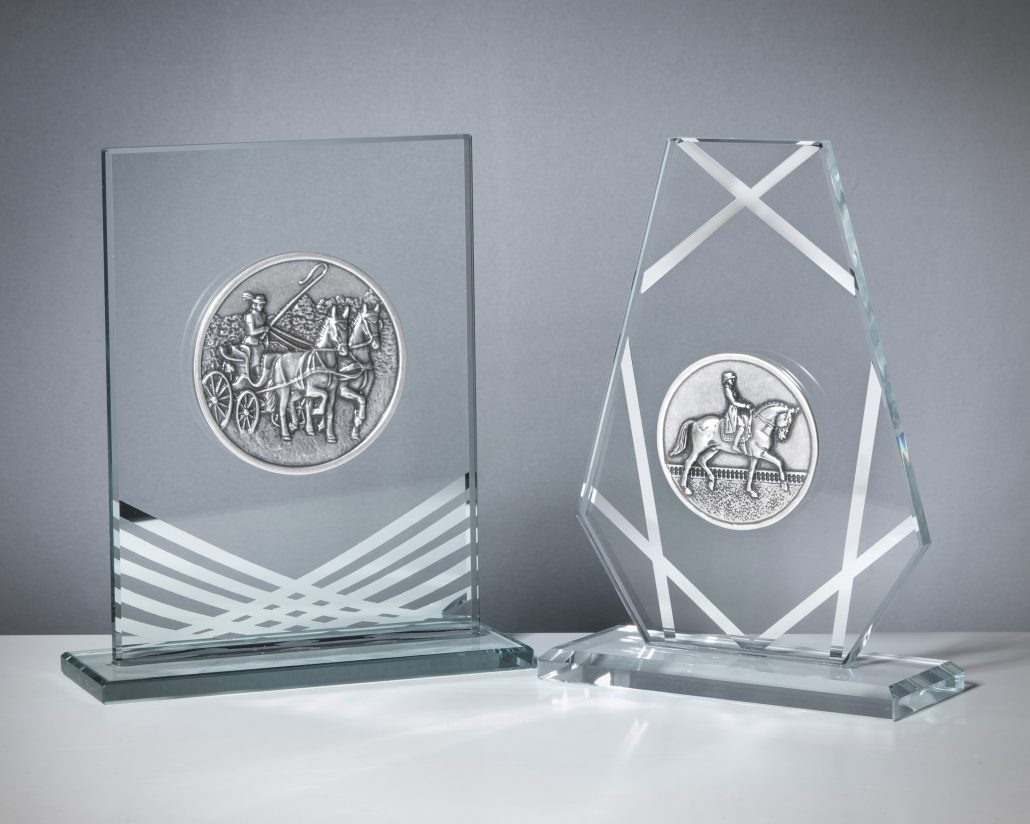 Selection Trophies Grey and Silver Line